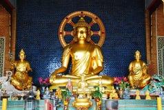 La imagen de Buda en modelo de China Imagen de archivo