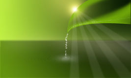 La imagen de fondo verde hizo el ââup Foto de archivo
