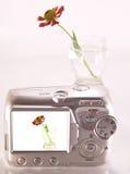 La imagen de una flor en un vidrio. Fotografía de archivo