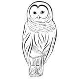 La imagen del búho imita el dibujo con la pluma y la tinta Imagen de archivo