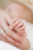 La imagen del bebé recién nacido entrega la palma femenina Foto de archivo