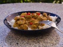 La imagen detallada del curry de cordero caliente de la comida india típica con arroz y el chile tajado sirvió en la placa profun Fotos de archivo libres de regalías