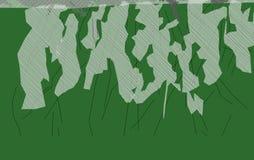 La imagen verde del extracto 4 del alerce hace nuevo paisaje imagen de archivo