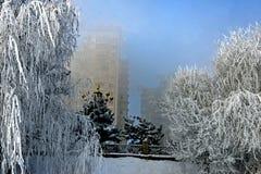 La impresión de invierno Foto de archivo