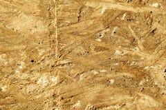 La impresión en un concreto es una textura del color naranja-amarillo de la madera contrachapada de madera fotografía de archivo
