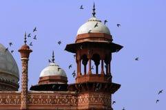 La India, Agra: Mezquita de Taj Mahal Imagenes de archivo