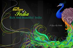 La India colorida Imagen de archivo libre de regalías
