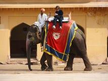 La India, montar a caballo del elefante Imagenes de archivo