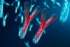 La infección de los Y-cromosomas DNA, del virus o de la infección penetra el cuerpo Cromosomas con la DNA que lleva el código gen ilustración del vector