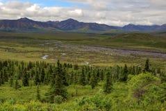 La inmensidad del parque nacional de Denali de Alaska durante una tarde del verano tardío imagenes de archivo