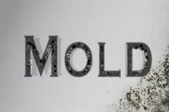 La inscripción moldea en la pared al lado de la ventana Fotografía de archivo
