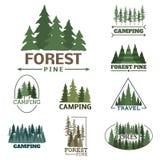 La insignia natural conífera del logotipo del viaje del árbol del verde de la silueta de la insignia al aire libre del bosque rem Imagenes de archivo
