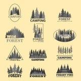La insignia natural conífera del logotipo del viaje del árbol del verde de la silueta de la insignia al aire libre del bosque rem Fotografía de archivo libre de regalías