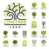 La insignia natural conífera del viaje del árbol del verde de la silueta de la insignia al aire libre del bosque remata la línea  ilustración del vector