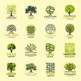 La insignia natural conífera del viaje del árbol del verde de la silueta de la insignia al aire libre del bosque remata la línea  stock de ilustración