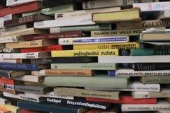 La instalación de los libros en la biblioteca fotografía de archivo