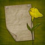 La invitación con la cala amarilla Ilustración del Vector