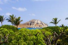 La isla Imágenes de archivo libres de regalías