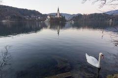 La isla Bled Imagen de archivo libre de regalías