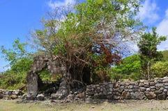 La isla de Nevis, el Caribe Imagen de archivo libre de regalías