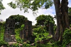 La isla de Nevis, el Caribe Imagen de archivo