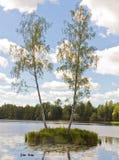 La isla en el lago Fotografía de archivo