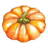 La Jack-o-lanterne végétale Halloween de potiron orange d'aquarelle a isolé Images libres de droits