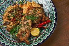 La jambe de l'agneau a fait cuire au four avec de la sauce dans un plat en céramique, plan rapproché avec un houmous garnissent C Photographie stock libre de droits