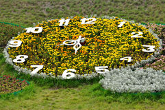 la Jardín-cama le gusta una Señal-tachuela grande del reloj del verano fotos de archivo libres de regalías