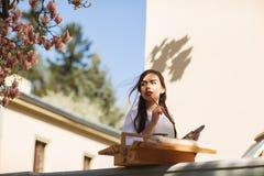 La jeune artiste de sourire de femme de brune peint un tableau sur la rue, pr?s d'un bel arbre de magnolia image libre de droits