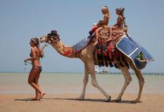 La jeune belle femme roule les enfants sur un chameau Photo stock
