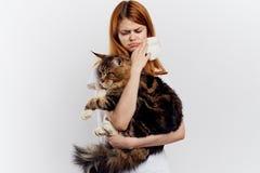 La jeune belle femme sur un fond blanc tient un chat, une allergie aux animaux familiers Images stock