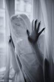 La jeune belle fille pose derrière un rideau images libres de droits