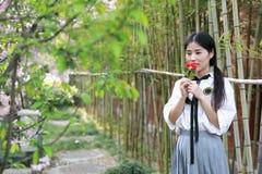 La jeune belle jeunesse adorable mignonne heureuse chinoise asiatique d'étudiant dans un jardin de parc extérieur dans l'odeur d' images stock