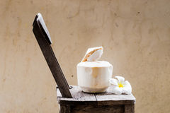 La jeune eau de noix de coco Image libre de droits
