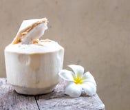 La jeune eau de noix de coco Image stock