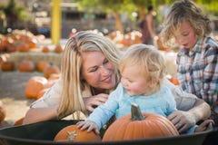 La jeune famille apprécie un jour à la correction de potiron Images stock