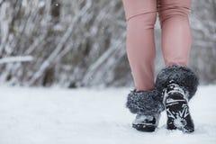 La jeune famille avec des enfants marchent en parc d'hiver Winte Photo libre de droits
