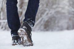 La jeune famille avec des enfants marchent en parc d'hiver Winte Images libres de droits