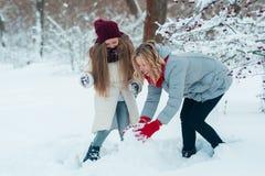 La jeune famille ont l'amusement et font un bonhomme de neige en parc neigeux image libre de droits
