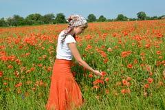 La jeune femme admire les pavots dans un terrain Photos libres de droits