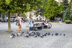 La jeune femme alimente un troupeau des pigeons photos libres de droits