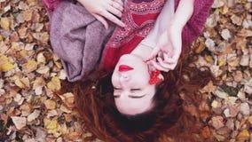 La jeune femme attirante avec des mensonges rouges de cheveux au-dessus des feuilles sèches tient une cendre de montagne dans sa  Photos libres de droits