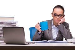La jeune femme d'affaires dans le bureau d'isolement sur le blanc Image libre de droits