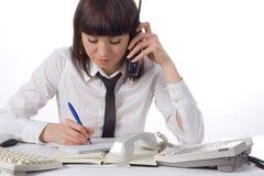 La jeune femme d'affaires travaille au bureau Image stock
