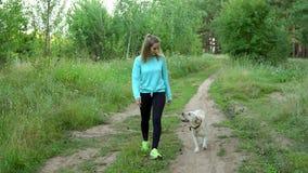 La jeune femme marche avec le chien dans la forêt Photographie stock libre de droits