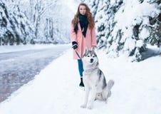 La jeune femme marche en parc avec le chien de traîneau sibérien Images stock