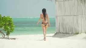 La jeune femme marche nu-pieds sur la plage banque de vidéos