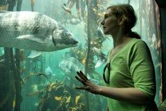 La jeune femme regarde de grands poissons Images stock