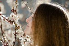 La jeune femme sent la branche de floraison de l'abricot, jour ensoleillé Photos libres de droits